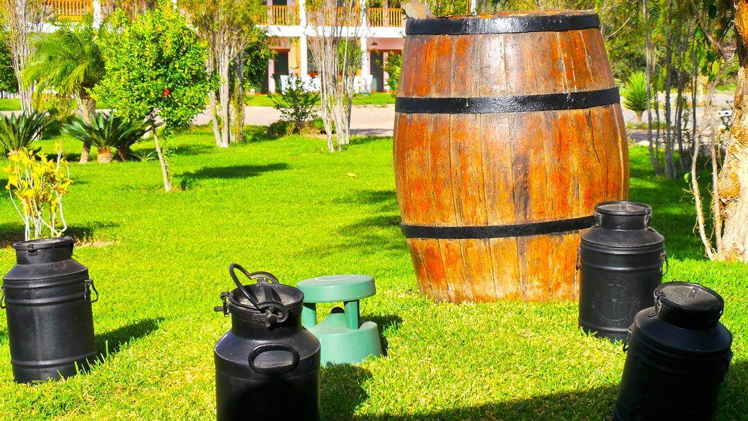 Barriles de las mejores épocas en las que se preparaba pisco en la hacienda.