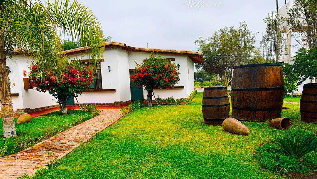 Barriles de Pisco restauradas en honor a la historia de la Casa Hacienda Nasca Oasis